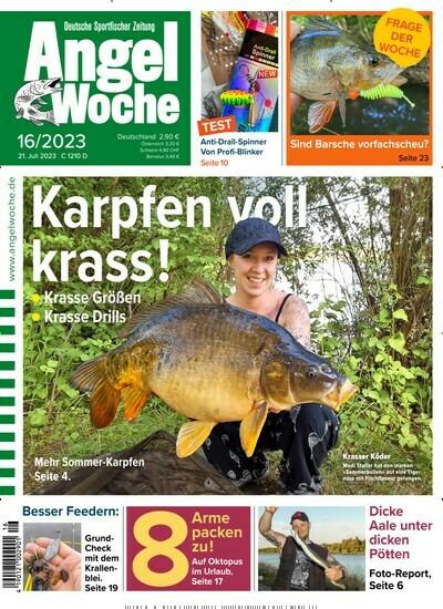 was heißt catfishing auf deutsch